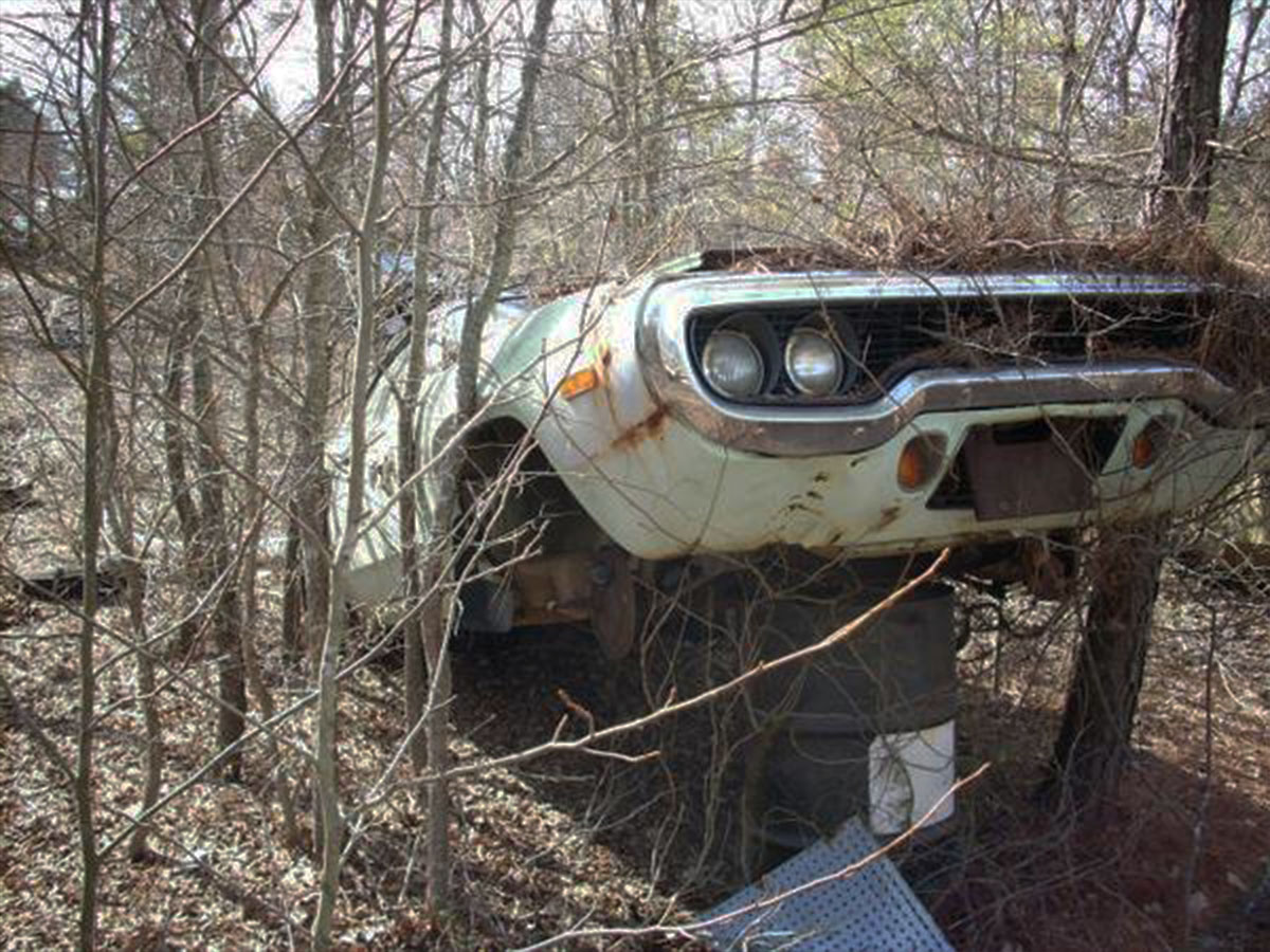 Sleeping Beauties Rides Found In Old Junkyard Street Muscle