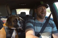 Video: Vaughn Gittin Jr. Smashes It in the Ford Fiesta With His Dog