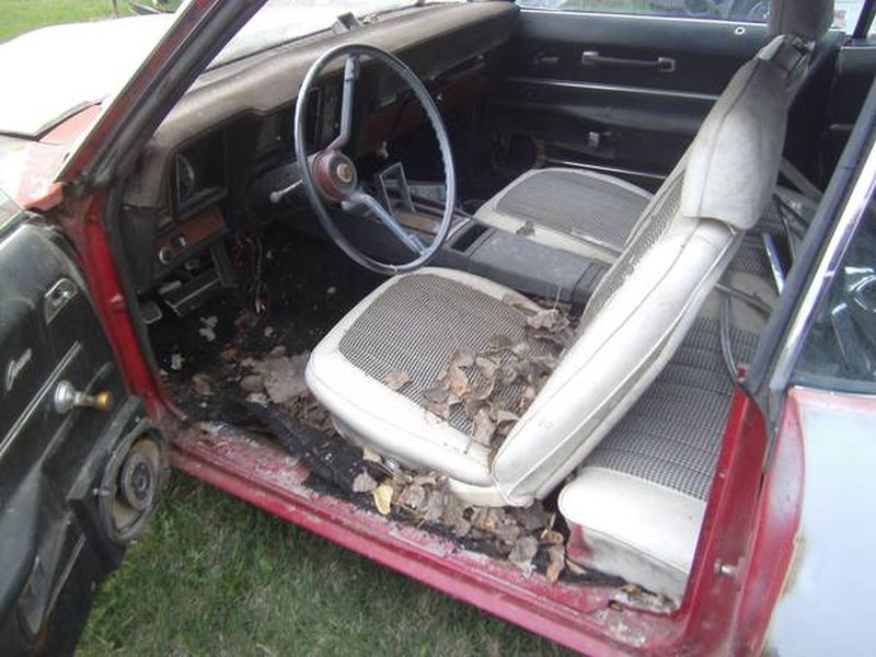 Craigslist Find: Redneck Special Camaro Or Low Miles Survivor Z/28 ...