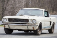 shelby-frontleft-1