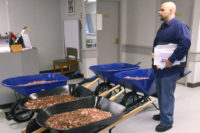 300,000 Pennies, $400 In Wheelbarrows, Beating The DMV ... Priceless