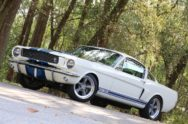 Driving Revology's Coyote-Powered 1966 Shelby GT350
